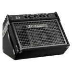 "Traynor DW10 10""/200w Combo Drum Amp"
