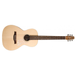 Seagull Entourage Series Grand Parlor Sized Acoustic Guitar (046515)